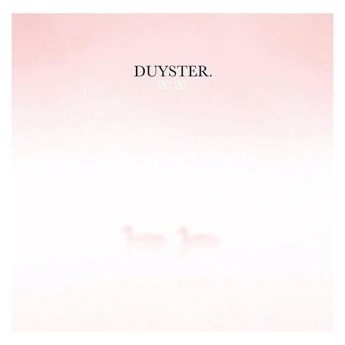 Duyster 2020